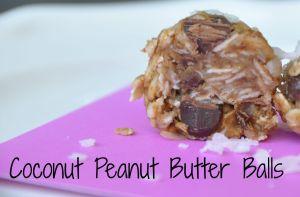 Coconut Peanut Butter Balls